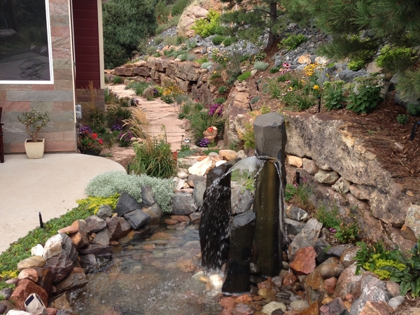 Housesitting assignment in Indian Hills, Colorado, United States