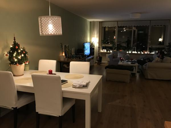 Housesitting assignment in Haarlem, Netherlands