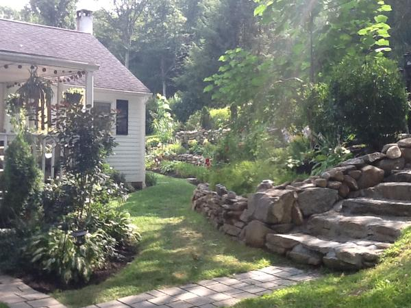 Housesitter in Connecticut Countryside - Great Hiking Nearby!