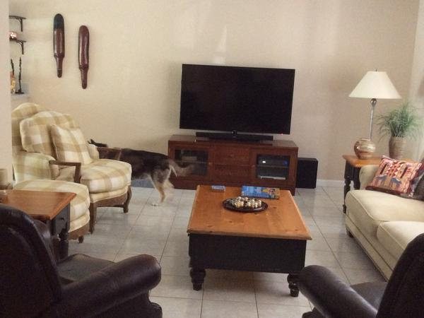 Housesitting assignment in Fort Lauderdale, Florida, United States
