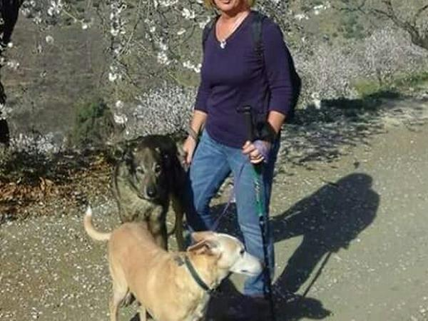Housesitting assignment in Comares, Spain