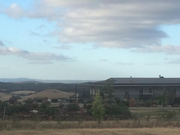 Housesitting assignment in Castlemaine, VIC, Australia