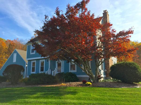 Housesitting assignment in Berlin, Connecticut, United States