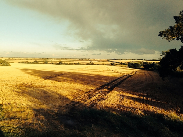 House Sitter required for spacious house with stunning views in Buckinghamshire.