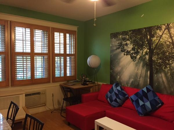 Capitol Hill House and Cat Sitter Needed