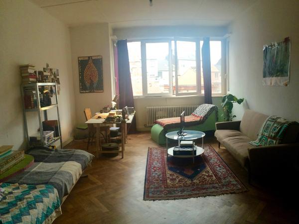 Housesitting assignment in Antwerpen, Belgium