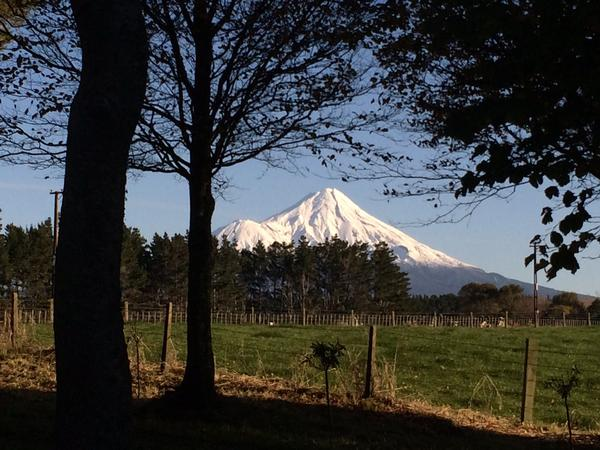 Housesitting assignment in Stratford, New Zealand