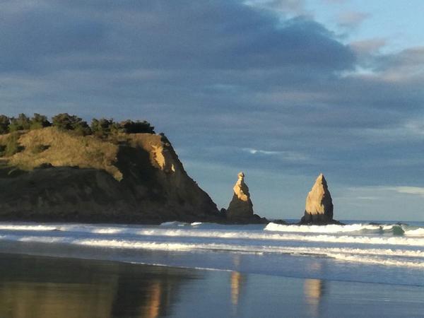 Housesitting assignment in Karitane, New Zealand