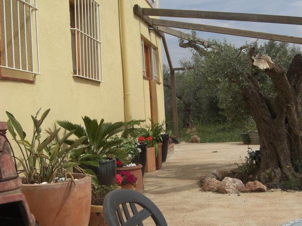 Housesitting assignment in L'Aldea, Spain