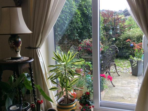 Housesitting assignment in Haworth, United Kingdom