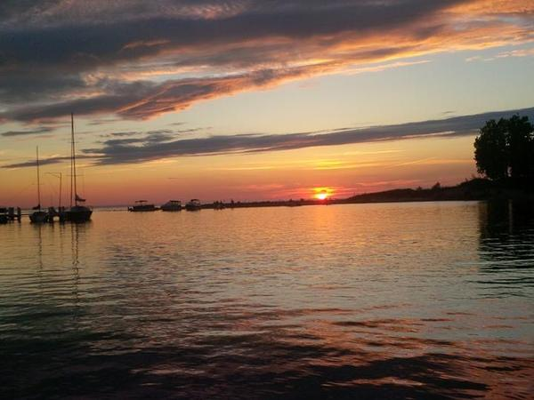 Housesitting assignment in Lambton Shores, ON, Canada