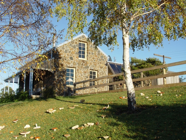 Housesitting assignment in Sheffield, TAS, Australia