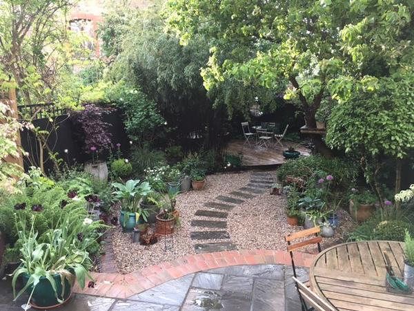 Cat care in lovely North London home