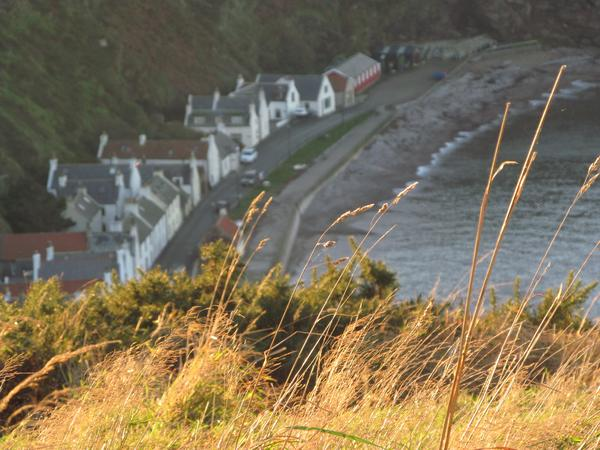 Housesitting assignment in Pennan, United Kingdom