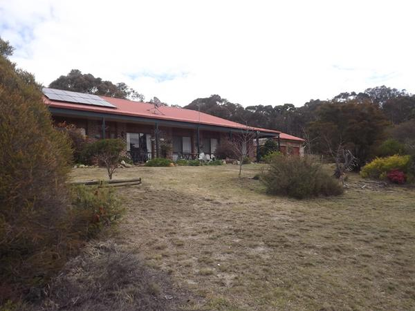 Housesitting assignment in Goulburn, NSW, Australia