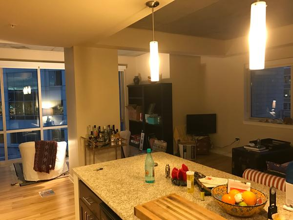 Great Apartment in Union Station with 2 Sleepy Loving Kitties