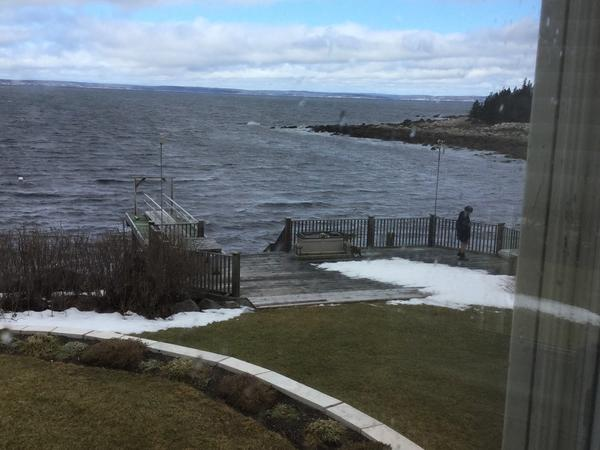 Housesitting assignment in Hacketts Cove, Nova Scotia, Canada