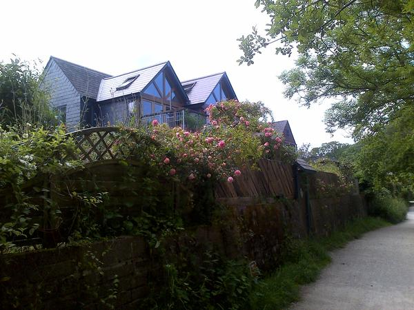 Housesitting assignment in Totnes, United Kingdom