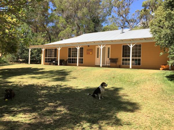 Housesitting assignment in Perth, WA, Australia