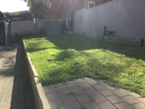 3 bedroom home with yard & pets need TLC while we are on our overseas honeymoon
