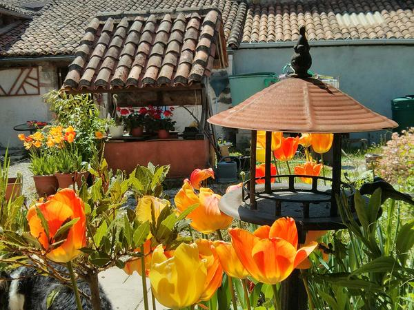 Housesitting assignment in Nontron, France