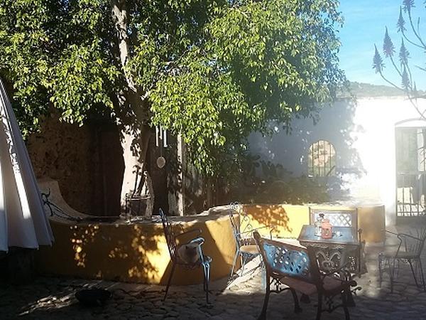 Housesitting assignment in Villamartin, Spain