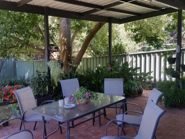 Housesitting assignment in Bendigo, Victoria, Australia