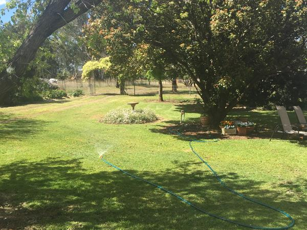 Housesitting assignment in Spring Ridge, New South Wales, Australia