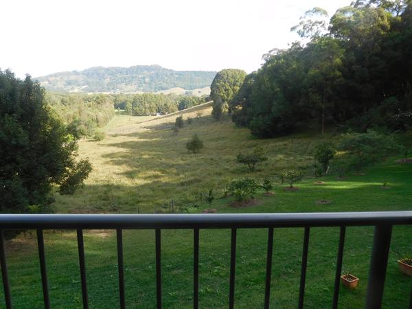 Housesitting assignment in Mullumbimby, New South Wales, Australia