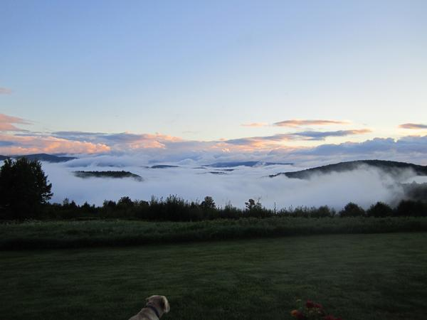 Housesitting assignment in Montpelier, Vermont, United States