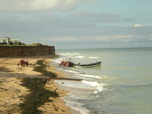 Home and pet sitter needed on Normandy coast