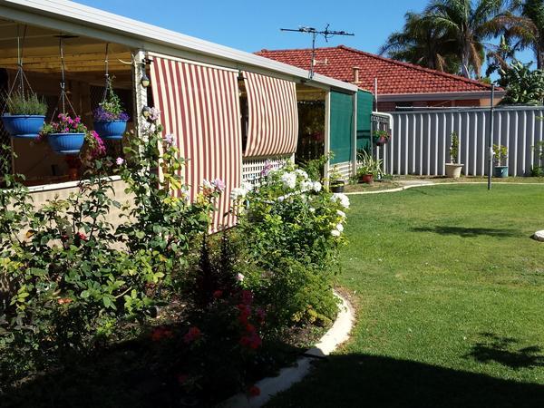 Housesitting assignment in Warnbro, Western Australia, Australia