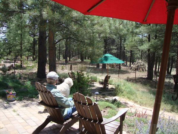 Housesitting assignment in Flagstaff, Arizona, United States