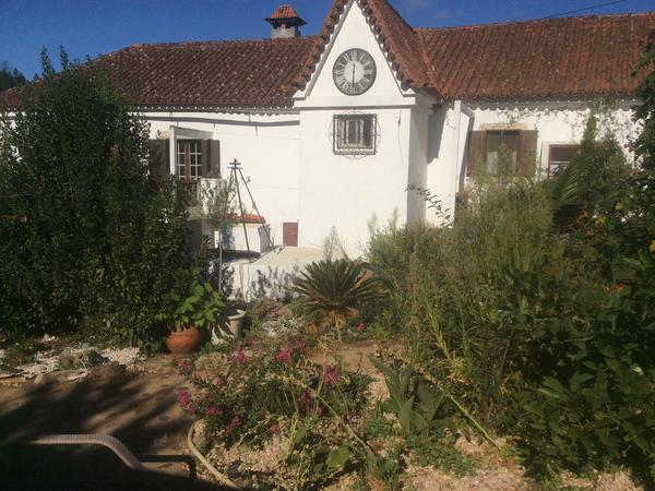 Housesitting assignment in Coimbra, Portugal