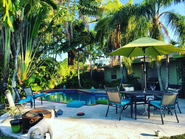 Housesitting assignment in Miami, FL, United States