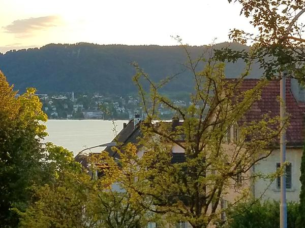 Housesitting assignment in Zürich (Kreis 8) / Weinegg, Switzerland