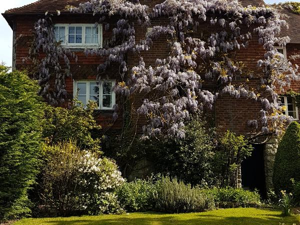 Housesitting assignment in Sutton Valence, United Kingdom