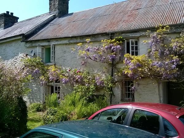 Housesitting assignment in Carmarthen, United Kingdom