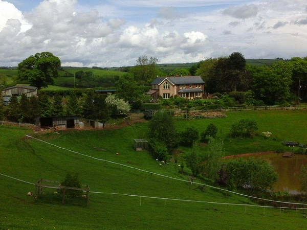 Housesitting assignment in Cadeleigh, United Kingdom