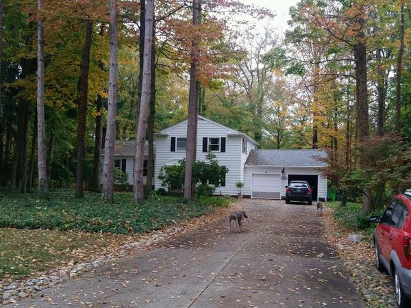 Housesitting assignment in Alliance, Ohio, United States