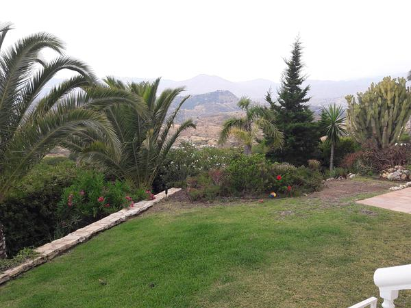 Housesitting assignment in Mijas, Spain