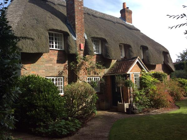 Fairytale thatched cottage in famous village with 3 pedigree cats.