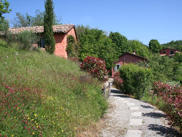 Housesitting assignment in Molazzana, Italy