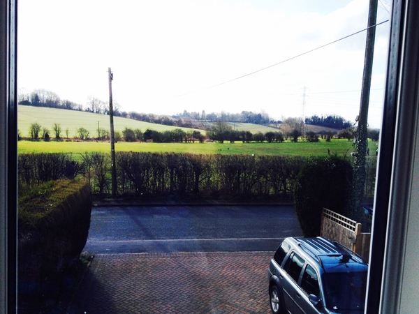 Housesitting assignment in Hartlebury, United Kingdom