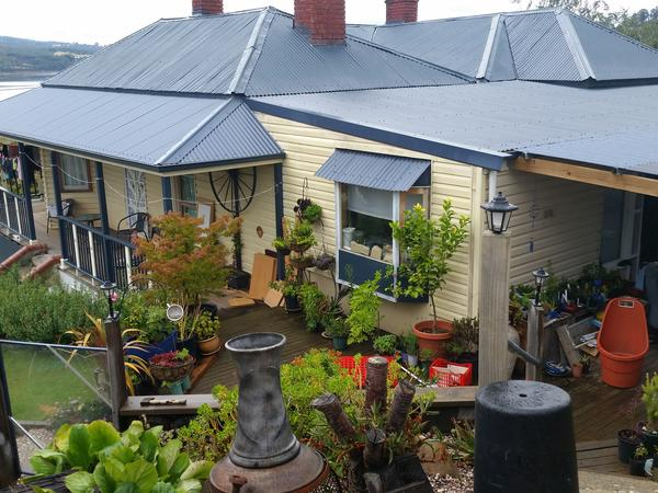 Housesitting assignment in Franklin, Tasmania, Australia