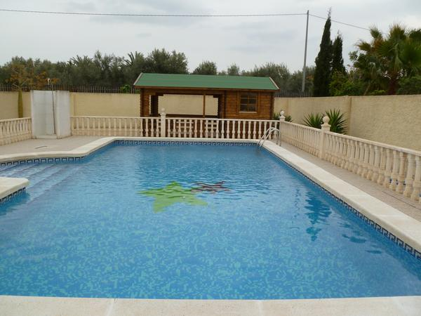 Housesitting assignment in Catral, Spain