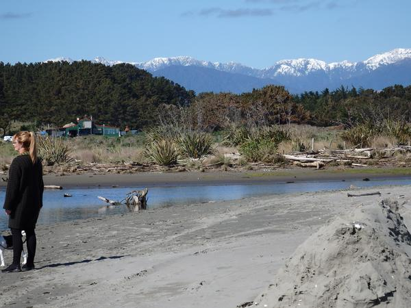 Housesitting assignment in Te Horo, New Zealand