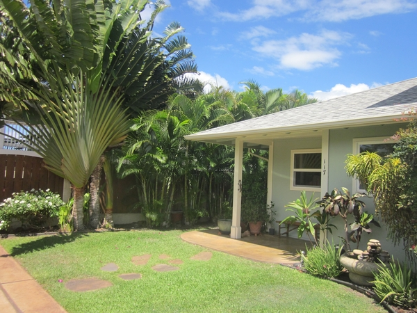 House and Pet sitting on the beautiful island Of Maui
