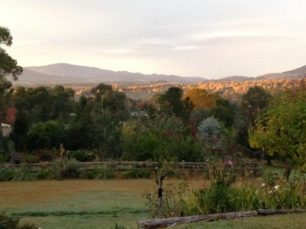 Housesitting assignment in Yackandandah, Victoria, Australia