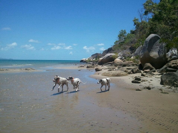 Louise from Cairns, QLD, Australia